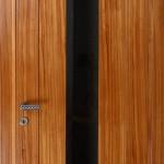 דלתות פנים פורניר d6