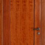 דלתות פנים פורניר d1